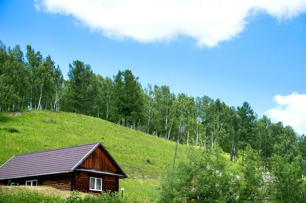 Domek w lesie w lecie
