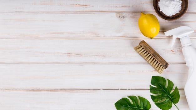Domowe ekologiczne środki czyszczące liście monstery i cytryna