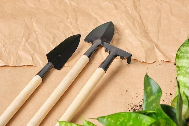 Domowe kwiaty i narzędzia do kwiaciarstwa łopata abor, grabie, miarka, metalowe narzędzie z drewnianą rączką na tle papieru kraft