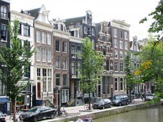 Domy z lat 18-19 amsterdam tar, drzewa
