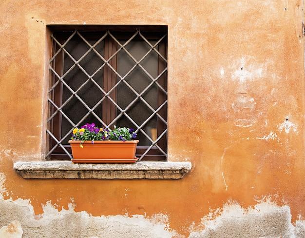 Doniczka w oknie z kratką