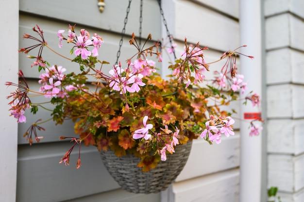 Doniczka z różowymi kwiatami na tle ściany domu.