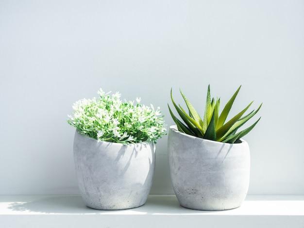 Doniczki betonowe. nowoczesne geometryczne donice cementowe z białymi kwiatami i zieloną soczystą rośliną na białym tle