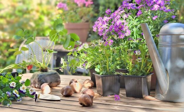 Doniczki z kwiatami i sadzonki truskawek na ogrodowym stole na przydomowym tarasie
