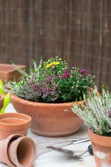 Doniczki z terakoty z jesiennymi kwiatami kompozycja zewnętrzna