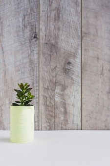 Doniczkowa roślina w kolorze żółtym malował aluminiową puszkę na białym biurku