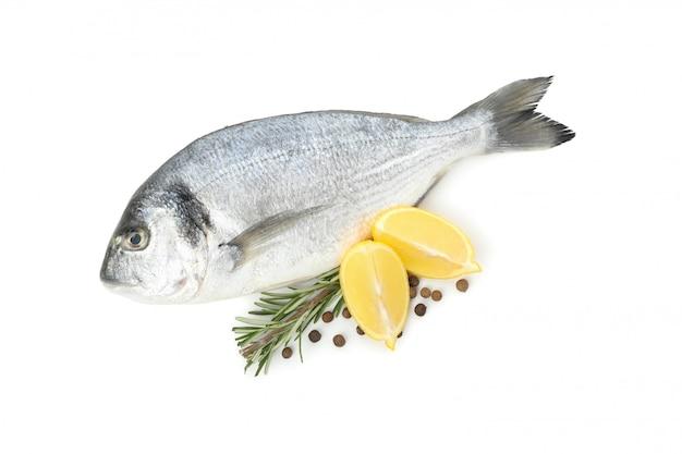 Dorado ryba, cytryna, rozmaryn i pieprz odizolowywający na bielu