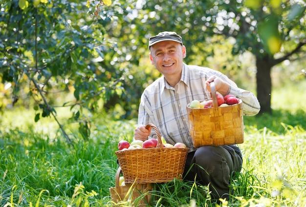 Dorosły mężczyzna siedzi w ogrodzie zbioru jabłek