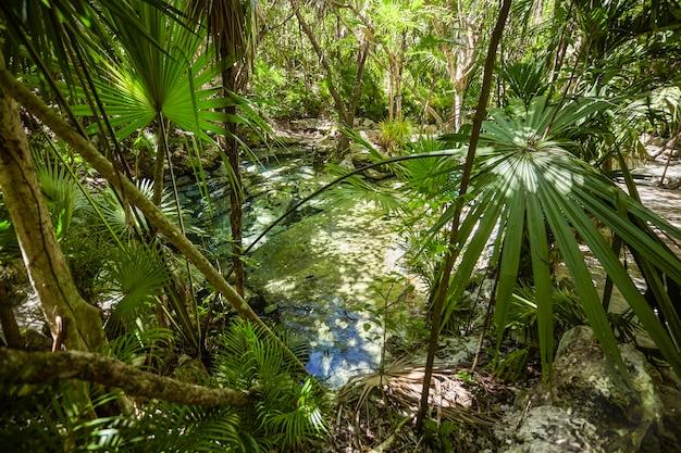 Dostań się do cenote azul #3