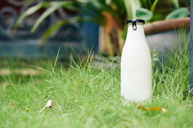 Dostarczono pełną szklaną butelkę świeżego mleka lub jogurtu na zielony trawnik przed domem klienta