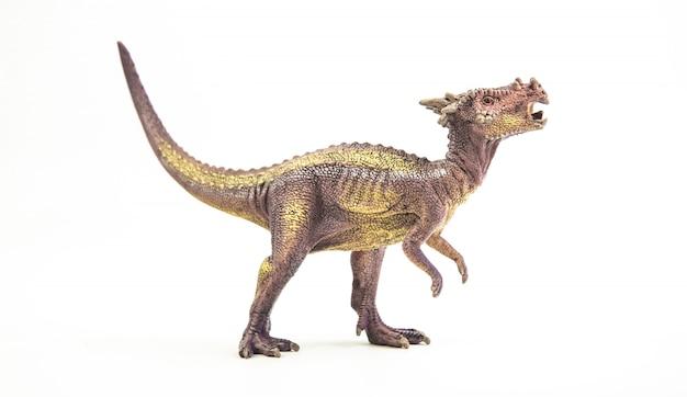Dracorex, dinozaur.