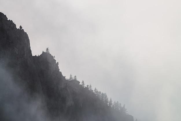 Dramatyczna Posępna Mgła Wśród Gigantycznych Gór Skalistych. Premium Zdjęcia