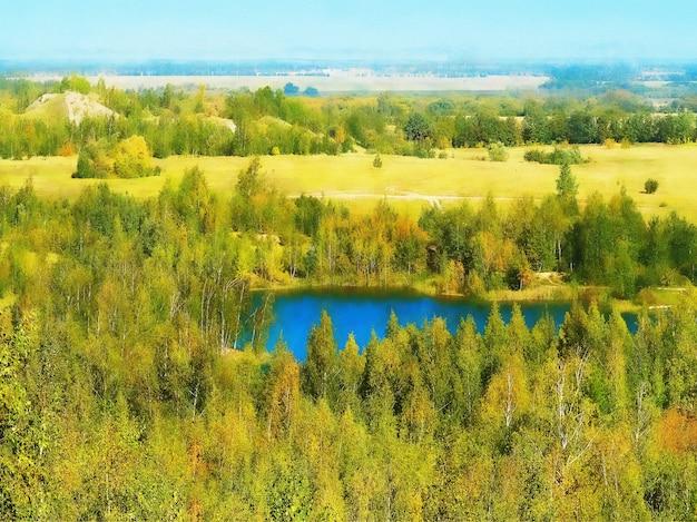 Dramatyczne niebieskie jezioro otoczone zielonym lasem ilustracją