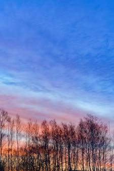 Dramatyczne niebo i chmury, sylwetki drzew na sunrize.