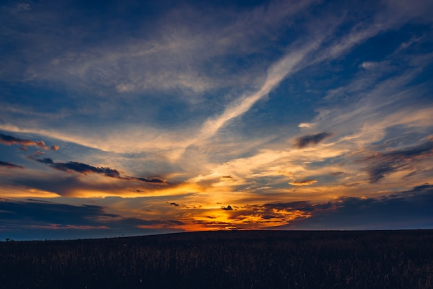 Dramatyczne niebo zachód słońca nad polem zbóż