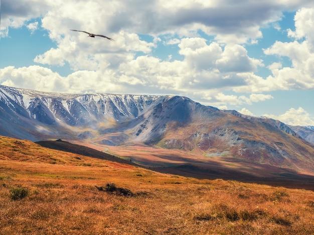 Dramatyczne złote światło i cień na skale w jesiennym stepie. wysokogórski płaskowyż jesztykol. góry ałtaj, rosja. syberia.
