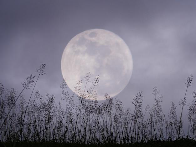 Dramatyczny nocne niebo z księżyc w pełni i łąką dla halloween tła.