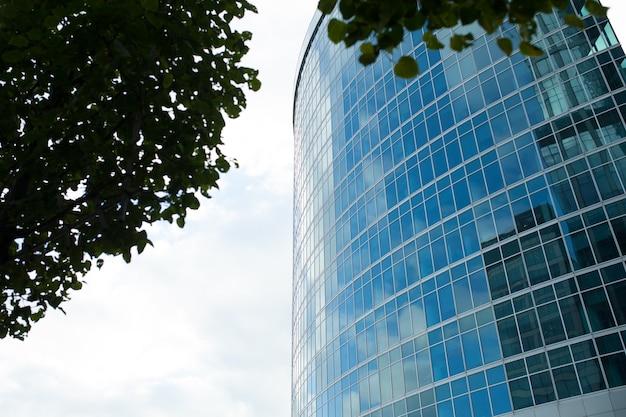 Drapacze chmur z szklaną windiws ścianą przeciw niebieskiemu niebu przeglądają przez drzew