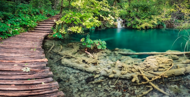 Drewna mosta zieleni jeziora pano