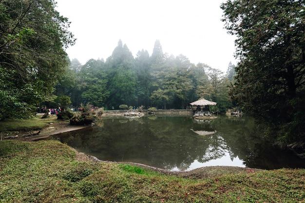 Drewniana altana na jeziorze z cedrowymi drzewami i mgłą w tle w lesie w alishan.