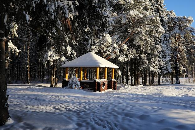 Drewniana altana w lesie w zimowy słoneczny dzień