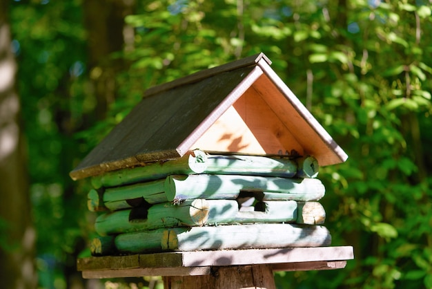 Drewniana budka dla ptaków w formie domku na pniu w parku