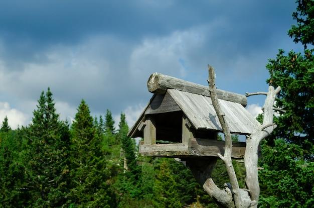 Drewniana budka dla ptaków zbudowana ze starej gałęzi drzewa.