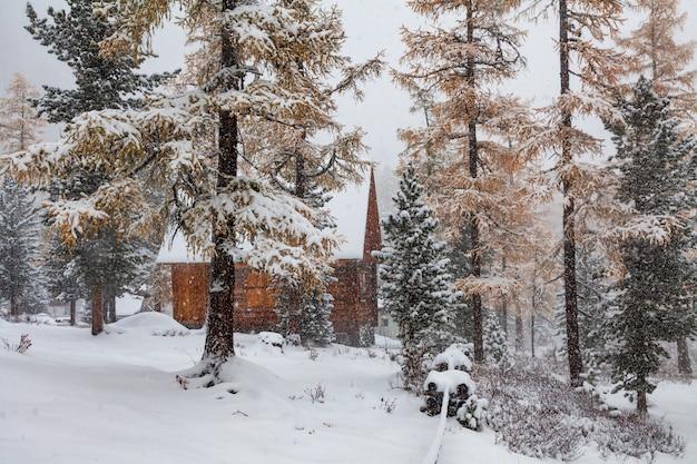 Drewniana chata w lesie podczas opadów śniegu.