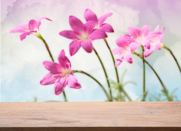 Drewniana deska z pięknymi różowymi kwiatami lilii deszczowej na pastelowym niebie, miękka ostrość