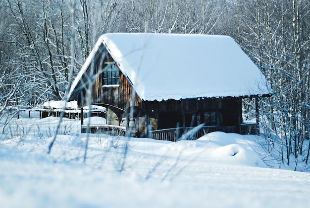 Drewniana kabina zimowa w lesie