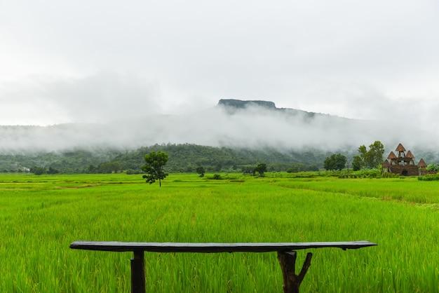 Drewniana ławka na zielonym polu ryżowym z mgły mgły i górskim tle w porze deszczowej, krajobraz azjatyckiej przyrody