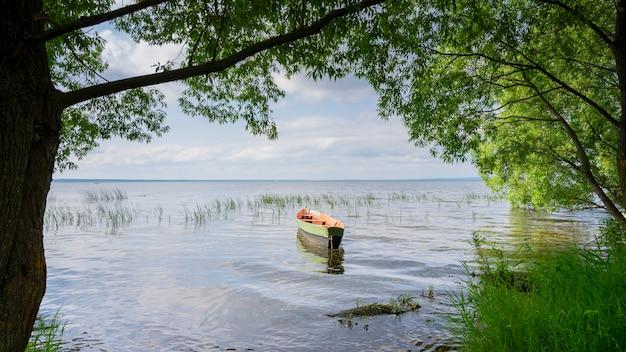 Drewniana łódź na jeziorze wśród drzew