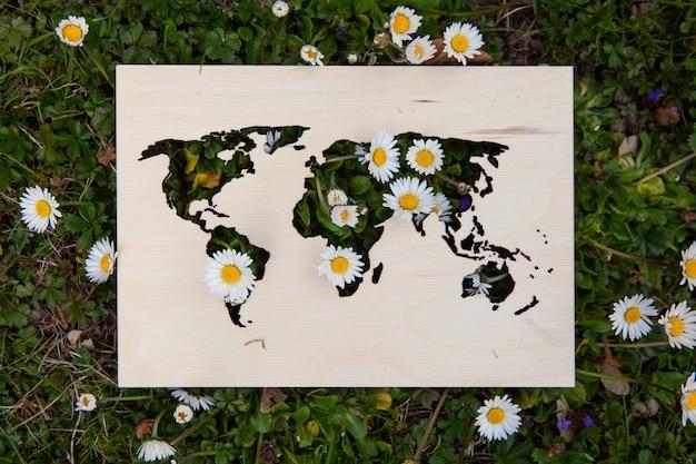 Drewniana mapa świata leży na trawie, kwiaty przebijają się przez przeszkody. daisies spring. przebudzenie ziemi