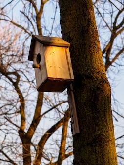 Drewniana ptaszarnia na drzewie w parku. wieczorne słońce oświetla budkę dla ptaków.