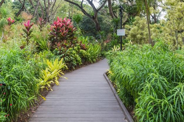 Drewniana ścieżka ogrodowa