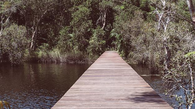 Drewniana ścieżka w głębokim zielonym jeziorze leśnym. piękna drewniana ścieżka do trekkingu przyrodniczego z jeziorami i leśnym krajobrazem rayong provincial east plant center thailand