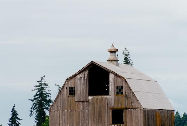 Drewniana stara stajnia w lesie z jasnym białym niebem