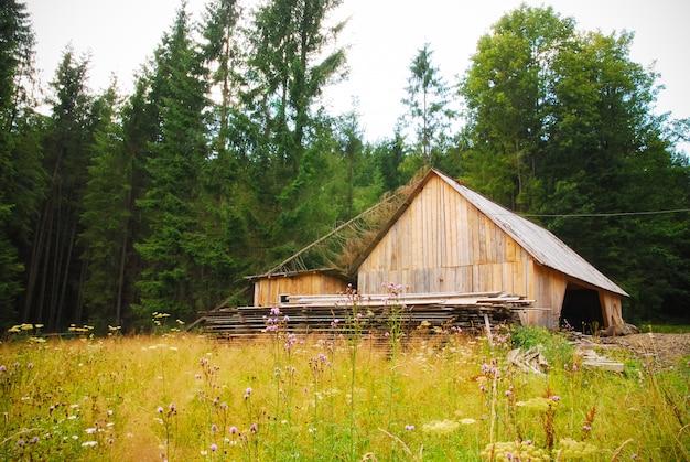 Drewniana stodoła w lesie
