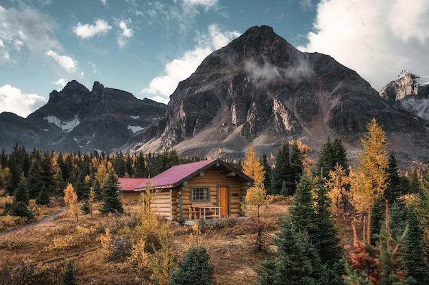 Drewniane chaty z górami skalistymi w lesie jesienią w parku prowincjonalnym assiniboine, kanada