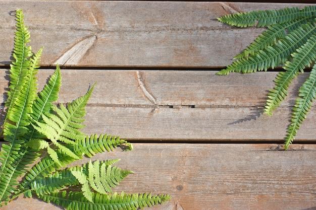 Drewniane deski tło z liści paproci w rogach. skopiuj miejsce na twój tekst.