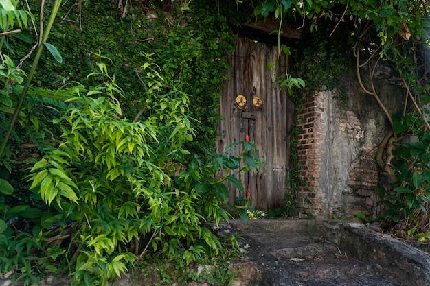 Drewniane drzwi z drzewa ściany