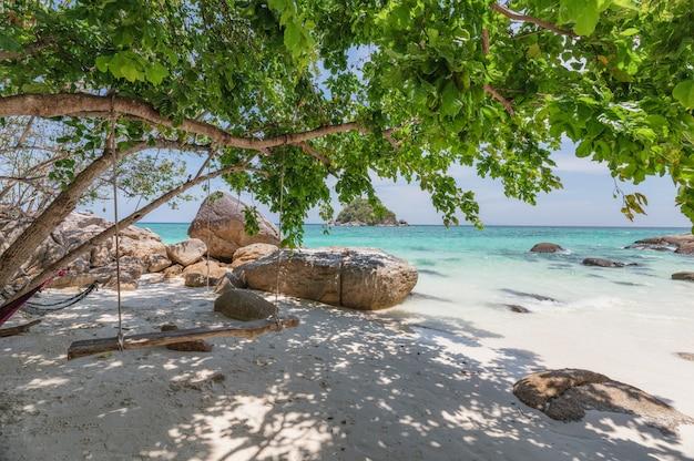 Drewniane huśtawka wiszące drzewo na tropikalnej plaży