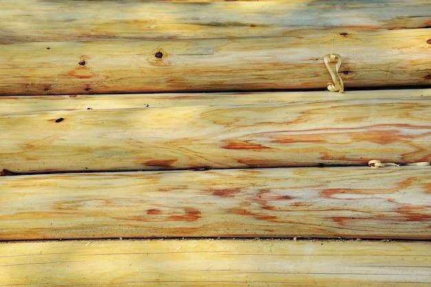 Drewniane kłody bez kory