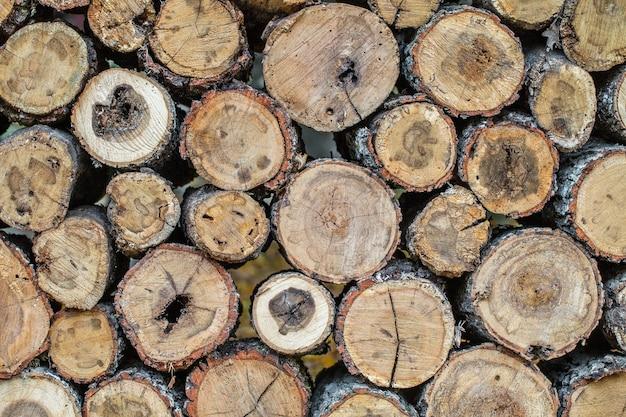 Drewniane kłody przetarte ułożone na stojaku jeden na jednego.