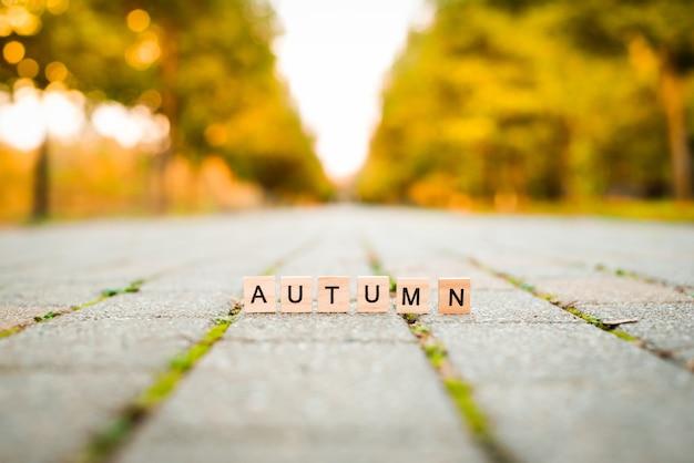 Drewniane litery na alei jesiennej. słowo jesień na płytach chodnikowych. drzewa pomarańczowe w tle