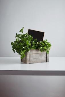 Drewniane pudełko ze świeżą zieloną pietruszką i kolendrą z ceną tablicy kredowej wewnątrz na białym tle na białym stole
