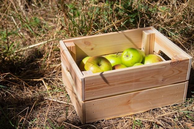 Drewniane pudełko ze świeżymi jabłkami
