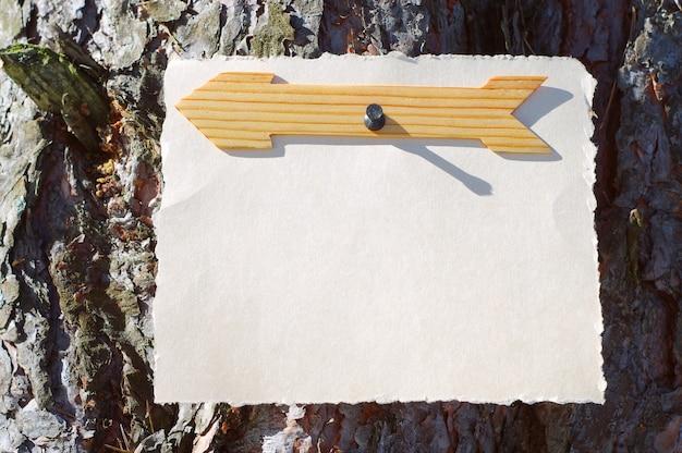 Drewniane strzałki znakują w lesie na drzewie w jasnym słońcu