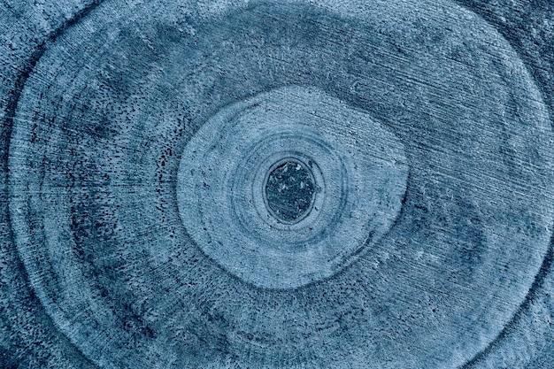 Drewniane szczegółowe tekstury ściętego pnia drzewa lub pnia, zbliżenie.