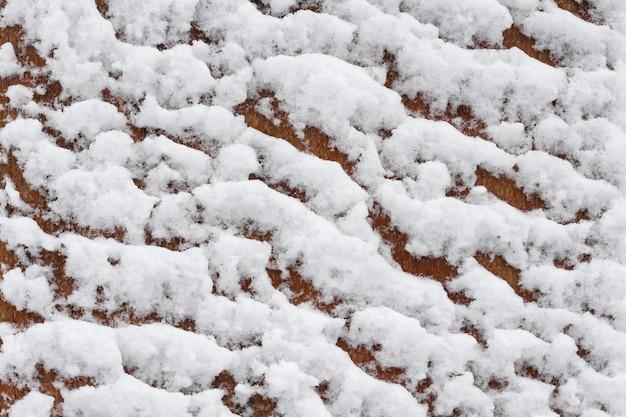 Drewniane tła pokryte śniegiem
